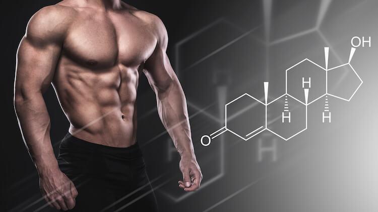 bodybuilder testosterone