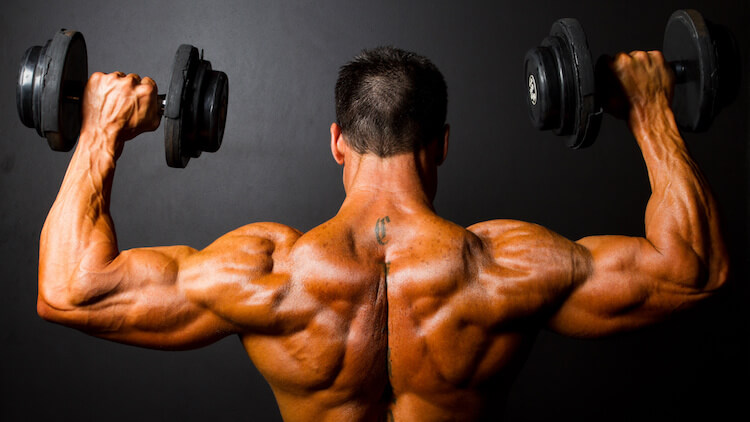 bodybuilder-dumbbells