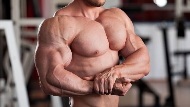 bodybuilder huge muscles